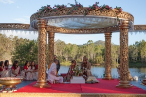 Indian Wedding_2259